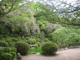 竹林院庭園b.jpg